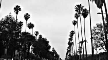 Spændingen mellem den amerikanske drøm og de bristede illusioners boulevard dirrer i de bedste romaner fra og om Los Angeles