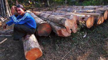 Mens de 27 EU-lande ikke kunne blive enige om at iværksætte sanktioner mod Myanmars olieindustri, bliver det fremover forbudt for europæere at importere træ fra Myanmar.