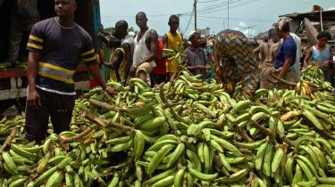 Flere afrikanske lande frygter, at åbne markeder vil betyde, at skrøbelige økonomier vil blive løbet over ende, og at aftalerne blot yderligere vil styrke en verdenshandel, hvor Afrika primært er eksportør af uforarbejdede råvarer.