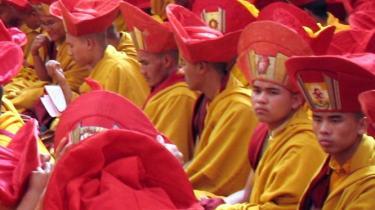 Introspektion, eller individets egen iagttagelse og refleksion over sine direkte erfaringer af sindets funktion, som blandt andet bruges i buddhismen, har i årtier været forvist fra den »objektive videnskab«.