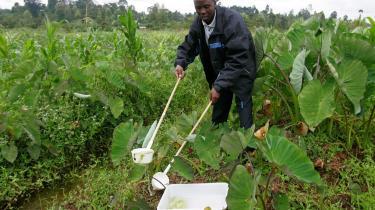 Her er den kenyanske forsker t James Mutunga, der er specialist i myg og malaria, ved at samle vandprøver, der indeholder myggelarver. Prøverne skal undersøges i laboratorium og testes for malaria i Karatina, Kenya.