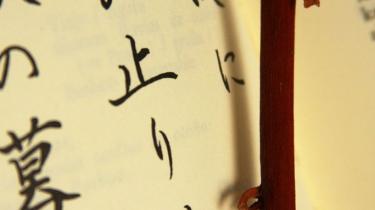 Haiku. Pia Tafdrup respekterer formens regler, men 101 haiku af den art, hun helst praktiserer, får læseren til at gispe efter luft