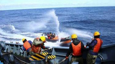 Spændingerne mellem Greenpeace og de japanske hvalfangere er blevet større i den senere tid. Indtil videre har aktivisternes skibe dog ikke været i stand til at bremse den japanske fangst. Konflikten kulminerede i forrige uge, da to aktivister fra Sea Shepherd blev holdt om bord på et af de japanske harpunskibe i to dage, efter det var lykkedes dem at klatre om bord.