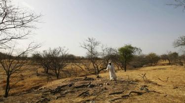 En sudanesisk landsbyboer står ved en massegrav, hvor han fortæller, at 25 af hans venner ligger, i udkanten af byen Mukjar i det vestlige Darfur i Sudan.