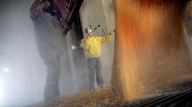 I USA-s kornkammer Midtvesten er majsdyrkningen øget de seneste år. Høje verdensmarkedpriser på majs skyldes en voksende efterspørgsel fra mange kanter. I Kina og Indien vokser behovet for øget kødimport fra bl.a. USA. Men landbrugseksperter peger også på en anden prisforhøjende faktor: Bioethanol til biler.