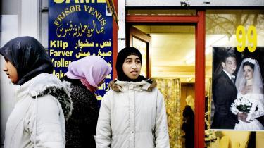 Islamkritikeren Helle Merete Brix hiver ingen kaniner op af hatten i ny bog om islam i Europa, men repeterer hvad hun og andre islamofober har sagt i årevis - og det bliver man ikke klogere af