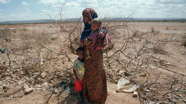 I Etiopien er 10 procent af befolkningen kronisk i fare for sult i mellem tre og 12 måneder om året. De første krisetegn på en omfattende tørke meldte sig allerede sidste år, hvor flere store og små regntider udeblev. De afsvedne landskaber taler nu deres tydelige sprog i et land, der normalt er den næststørste leverandør af mad i hele Afrika. Arkiv