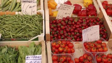 Det er billigere at købe ind i andre EU-lande end i Danmark, hvor fødevarepriserne er otte procent højere end i de andre EU-lande.