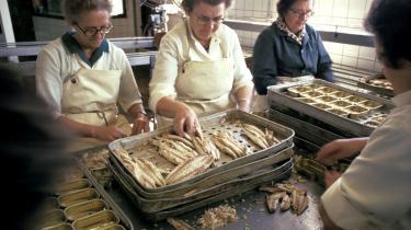Engang havde kvinderne på Glyngøre Fiskefabrik tavlt med at lægge markrelfiletter i dåser. Og folk kom fra hele egnen for at arbejde på møbelfabrikken, højttalerfabrikken eller fiskefabrikkerne. Dengang var glyngøreboerne stolte af, at Glyngøre var den by i Danmark, der havde flest millionærer i forhold til indbyggertallet på omkring 1.600.