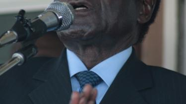 De fleste afrikanske lande ser helst en samlingsregering i Zimbabwe med både diktatoren Mugabe og oppositionen som deltagere.