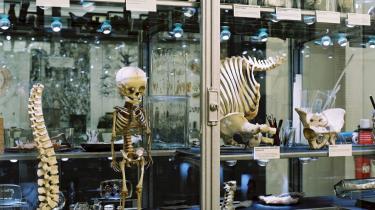 Der er en del af udstillingen på Berliner Medizinhistorisches Museum der Charité, der ryster mere end bortsprængte næser, fedt- eller skrumpelevere og misdannede fostre. Det er den del, der handler om det såkaldte -eutanasiprogram-, som Hitler og hans national-socialister satte i værk i 1933, og som varede til krigens slutning.