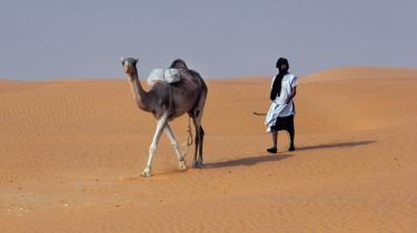 Denne mand og hans kamel, fotograferet i et af verdens fattigste lande, Niger, går måske oven på en guldgrube: EU-Kommissionens energiforskningsenhed foreslår nu, at EU skal oprette solfarme i Sahara for at få klimaneutral energi.