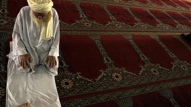 Muslimerne beklager vores materialisme med tilhørende skilsmisser, promiskuitet, alkoholisme og almindeligt overforbrug. Det kan de jo have ret i, men den model, de selv har, er i udviklingsmæssig henseende ubrugelig, mener kronikøren.