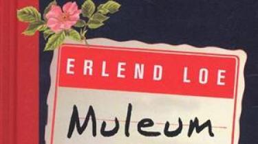 Norske Erlend Loe fortsætter med at producere film og tv i bogform, denne gang en lille tåreperser