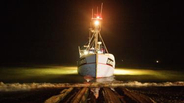 Ved 2-3-4-tiden om natten glider kutterne i havet med lanterner, der farver bølgerne røde og lysegrønne. Det gælder om at komme først ud for at få de bedste fangstpladser.