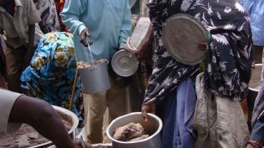 Hver tredje somalier er fuldstændig afhængig af nødhjælp, og den FN-støttede regering magter end ikke at holde ro i hovedstaden, Mogadishu. Pirateriet er blot det seneste symptom på det totale kaos, der hersker i landet.