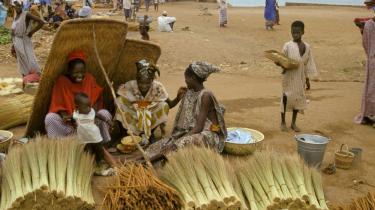 Malis selvstændige erhvervdrivende kvinder kan sætte skub i landets økonomiske udvikling.