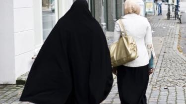 Danmark har formået at gennemføre nogle af de strammeste immigrationsregler i verden, og store dele af den danske debat og politik gør også sit til at fremmedgøre allerede herboende udlændinge og deres efterkommere, skriver dagens kronikører.