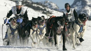 Snesport. Foruden Sierra Nevada er Formigal og Baqueira-Beret i Pyrenæerne blandt de mest populære spanske skisportssteder. På billedet Pirena 2008 Grand Prix Affinity hundeslæderæs i januar 2008 i Baqueira-Beret, der ligger i pyrenæerne i det nordlige Spanien.