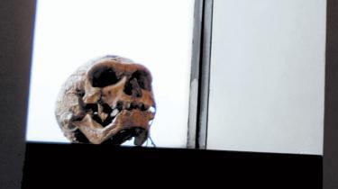 De naturvidenskabelig fag og museer står over for nedskæringer og massefyringer på grund af færre nye studerende og færre frie forskningsmidler. Det kan skade naturvidenskaben langt tid fremover. Videnskabsminister Helge Sander mener, at universiteterne aldrig har fået flere penge