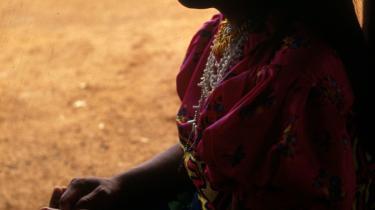 Indianerne i Darién-provinsen og andre steder i Panama kan nu se frem til selv at have rettighederne over det land, hvor de bor og arbejder. En rettighed, de har ventet i årevis på.