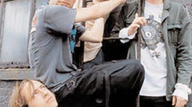 Animal Collectives nye album Merriweather Post Pavilion er allerede blevet fortolket, inden det er blevet udsendt. Fans har piratoptaget gruppens koncerter og ud fra dem lavet coverversioner af samtlige 11 numre på albummet. Det begyndte med duoen Blind Man's Colours guitar-bårne forsøg