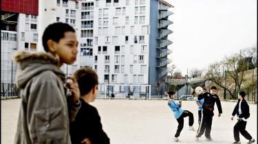 Papirløse franske immigranter har udviklet sig til en ny arbejderklasse. De udfører det arbejde, franskmændende ikke selv gider, men vejen mod legalisering er blevet længere, efter Sarkozy har overtaget præsidentposten.