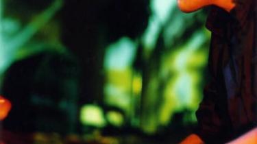 Den norske pianist og elektroniske jazzmusiker Bugge Wesseltoft har med sit koncept for levende og legende soloperformance vristet sig fri af sit eget statiske spejlbillede