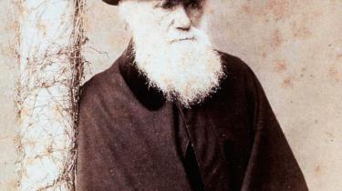 200 år efter Darwins fødsel er der stadig uenighed om, hvordan hans værk skal forstås - og ikke mindst om hvor meget det kan forklare.