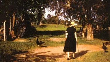 For nylig kom den første seriøse biografi om forfatteren Flannery O'Connor, som også optræder i et andet nyt, fyndigt værk, der gennemgår 350 års litteratur skrevet af kvindelige amerikanske forfattere, og som har afledt spørgsmålet: Hvorfor kan kvinder ikke skrive 'Den Store Amerikanske Roman'?
