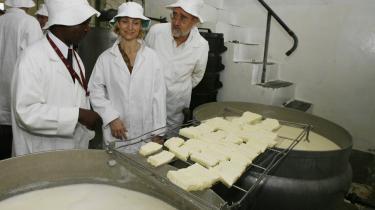 Udviklingsminister Ulla Tørnæs (i midten) undet et besøg på et mejeri i Harare i Zimbabwe. Hvis man vil holde sig inde i varmen hos Danida, skal må være forsigtig med kritik af danske udviklingsprojekter