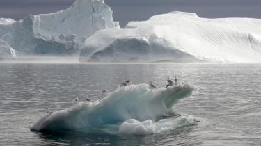 Afsmeltning fra indlandsisen kan være ansvarlig for op til 25 pct. af den havstigning, der er registreret de seneste 13 år.