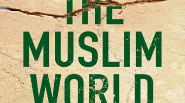 Indtil for nylig støttede USA hellere islamister  end  nationalistiske og sækulære bevægelser i Mellemøsten. Det ændrede sig efter 11/9.  Nu er det på tide, at USA reviderer sin holdning til politisk Islam, skriver Juan Cole i en ny bog