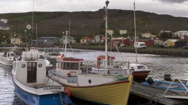 Især efter mange bankers sammenbrud spiller fiskeri   en stor rolle for Islands økonomi. Det er derfor afgørende, at landet kan bevare forbuddet mod udenlandske investeringer i det islandske fiskeri - også selv om landet bliver medlem af EU.