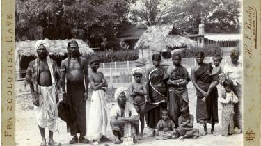 Den indiske landsby i Københavns Zoo trak hele 18.000 betalende gæster en sommersøndag i 1901.