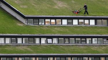 I Torshavn på Færøerne er der græs på taget. Ifølge Københavns nye klimaplan skal alle nye, flade tage også dækkes af græs.