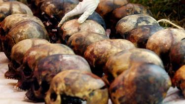 En kvinde arrangerer kranier fundet i en massegrav i Rwanda. Folkemordet i 1994 kostede omkring 800.000 mennesker livet.