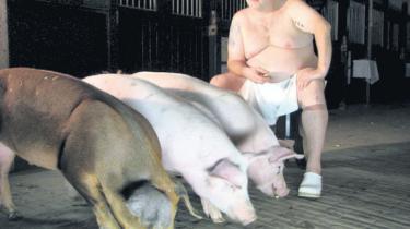 'Svinedrengen' udsættes for moderne dyreetik og global depression i Von Heiducks griseperformance 'Ach du liber'. Der er seks øf for idéen og den kvalmende grimhed hos grisenes menneskekolleger, men  langt mellem trøffelreplikkerne