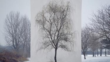 Lolland imponerer med temaudstilling om træ