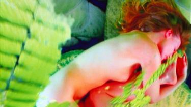 I sidste øjeblik før 2010-sæsonen fik kunstmuseet i Humlebæk  et designfirma som ny sponsor og kunne i går præsentere en udstillingskalender, der blandt omfatter videokunstens darling, der (delvis) har taget navn efter Pippi Langstrømpe