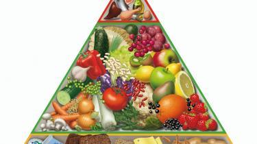 'En simpel illustration af de otte officielle kostråd'. Sådan betegner FDB deres madpyramide, som bliver brugt til undervisning i sund kost på landets folkeskoler. Men Madpyramiden stemmer ikke overens med de officielle kostråd, som ikke anbefaler, at man spiser kød