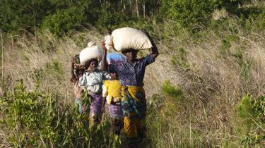 I Afrika er op mod 50 millioner hektar jord blevet opkøbt i løbet af de seneste år eller er i færd med at blive opkøbt af regeringer og velhavende investorer.