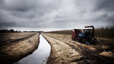 Regeringens jordskattelettelser er ikke til gavn for landbruget, mener vismændene. Landbrugets krise er ikke bare forbigående, som den generelle økonomiske krise er det, og derfor hjælper det ikke med den slags engangsgaver til landmændene.