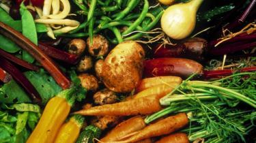 Kriser skal udnyttes til at foretage grønne omstillinger. Derfor er S og SF's plan for en ny grøn erhvervspolitik, hvor det offentlige bl.a kan være med til at fremme produkter uden farlig kemi, økologiske fødevarer m.v., god. Men et endnu større fokus på  grønne initiativer ville være bedre.