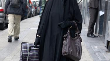 Debatten i sommertiden skal helst handle om muslimer - og om et problem, som stort set ikke findes i Danmark.