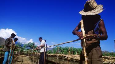 Hjælp. Mikrokreditter er kun ét eksempel på udviklingshjælp, hvis effekt man ikke kender. Men alligevel er evalueringsmetoder ikke særligt efterspurgte. Her et bistandsprojekt i Etiopien.