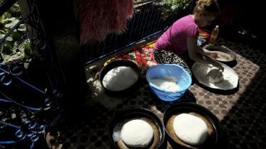 Omstrejfende romaer i Europa lader sig ikke bremse af hjemsendelse med penge. I stedet skal de tilbydes aktiv og lokal rådgivning, siger socialarbejderen Pavao Hudik, der med myndighedernes opbakning hjælper tilrejsende romaer med at finde på plads i Berlin