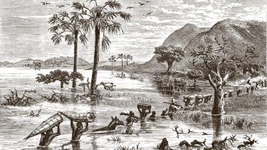 Den dagbogsskrivende rejsejournalist Henry M. Stanleys forunderlige rejse efter missionæren  dr. Livingstone i 1871  er nu genoptrykt på nudansk