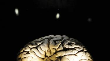 Efter 1.000 år. Neuro-videnskab er meget mere end studiet af hjernen. Det er en enestående mulighed for at forstå os selv. Efter gennemgangen af de første 1.000 års forsøg på at forstå hjernen er der spørgsmål til yderligere 1.000 års forskning.