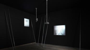 Den danske kunstscene har i 2010 budt på ekstraordinært gode oplevelser, modige unge kunstnere, nye tiltag til kunstdebat og så en hel masse af det samme som tidligere fra de store etablerede udstillingssteder